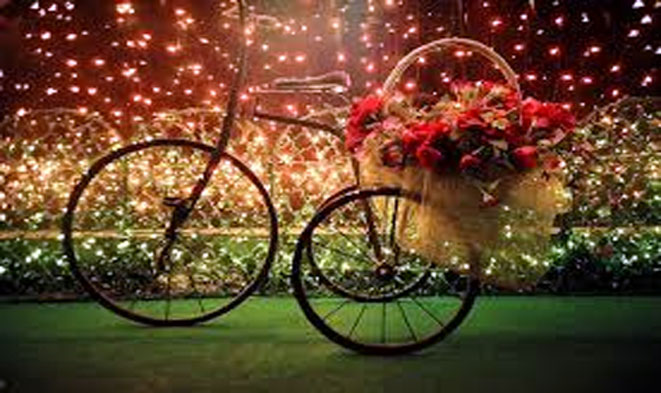 bicicleta-florida
